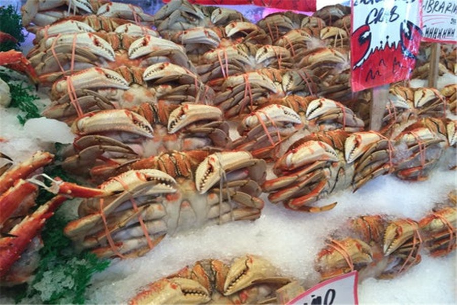 frozen seafood import