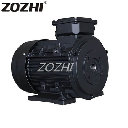 Hollow Shaft Electric Motor 711-4 0.25Kw  For Car Washer