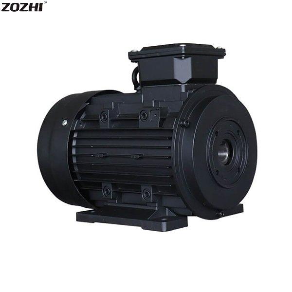 hollow shaft electric motor