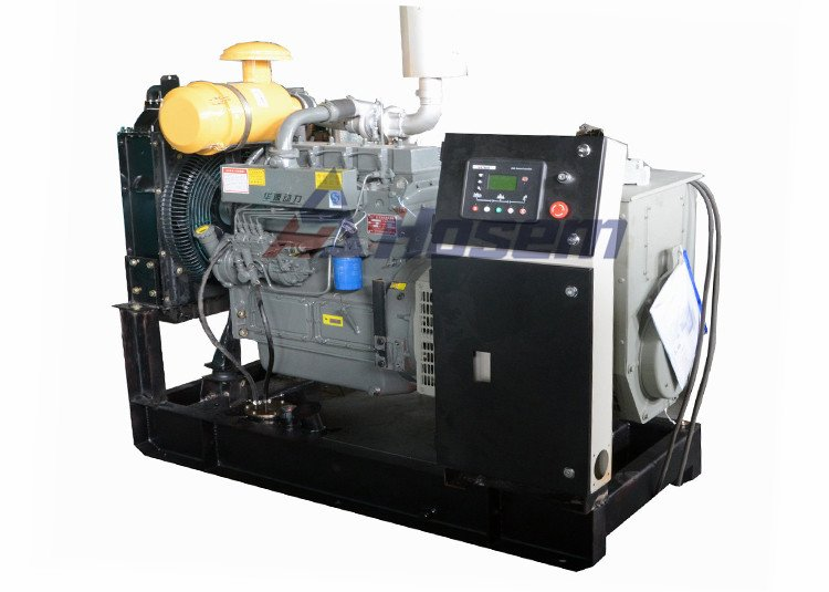 Ricardo Diesel Generator with Hosem Brushless Alternator
