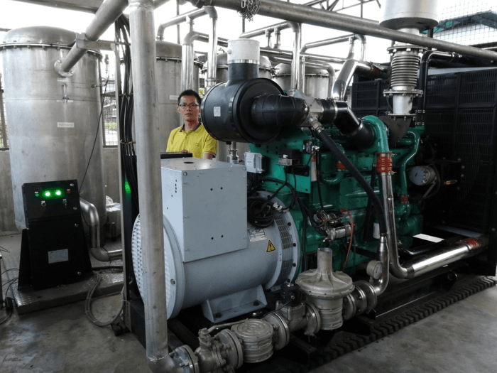 Biogas Generator Installation in Philippines