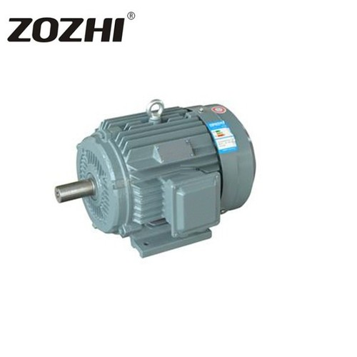 Y Series Three-Phase Induction Motor 0.55-315KW 4Pole