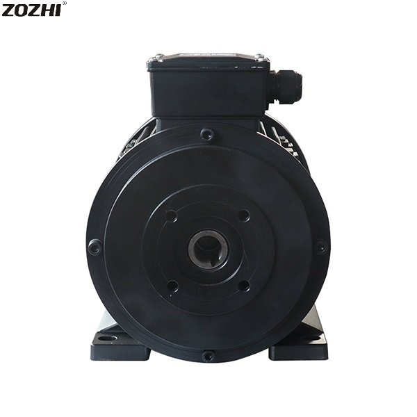 hollow shaft electric motor