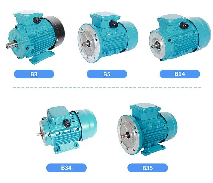 ML series induction motor
