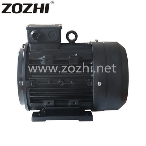 Hollow Shaft Electric Motor 100L2-4 3KW 4HP For Car Washer